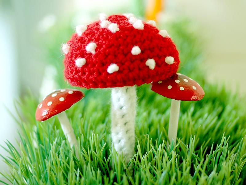 Mushroom1sm
